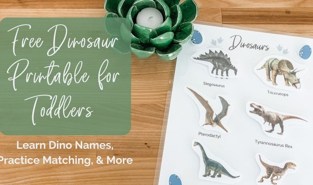 Free Dinosaur Printable for Toddlers: Learn Dino Names, Practice Matching, & More