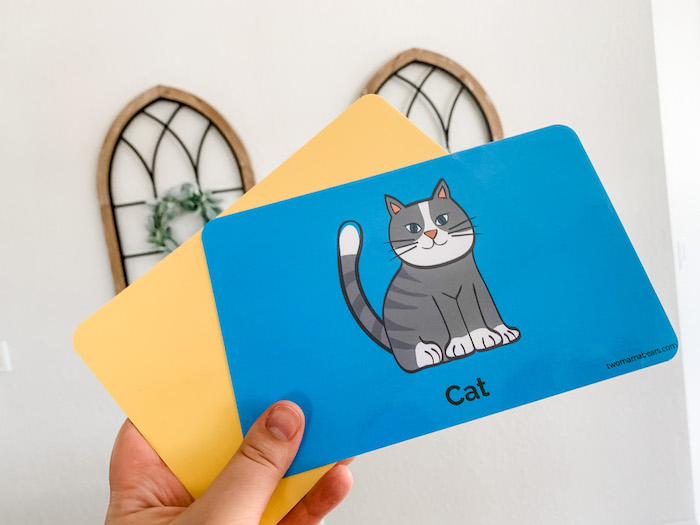 Flashcards for 6-9+ month olds