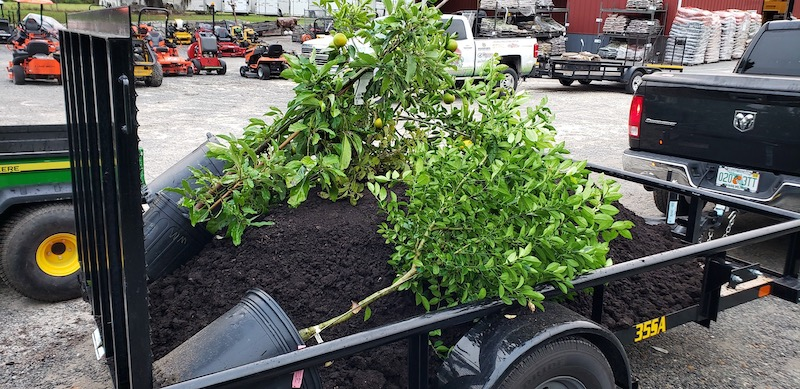 Truckload of black dirt for the garden