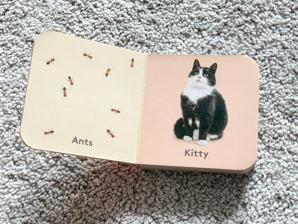 ants and kitty in montessori lovevery mini book