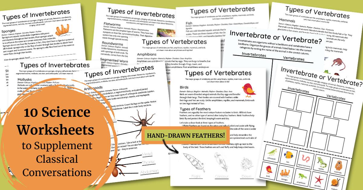 classical conversations science bundle invertebrates vs vertebrates